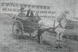 Indriði Guðmundsson og Guðrún Kolbeinsdóttir með dóttur sína Ólöfu Svöfu í lystikerru fyrir utan Sundhöll Reykjavíkur skömmu fyrir 1930. Mynd fylgir viðtalinu í Tímanum 24. desember 1967.