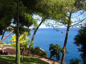 """Garðurinn """"Jardin Exotique de Monaco"""""""