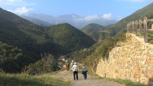 Pinarolo, Piemontehérað á Ítalíu