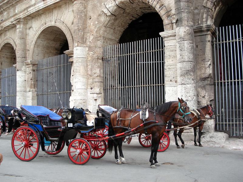 Róm - Colosseum